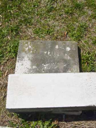 LEONARD, MARY ELLEN - Talbot County, Maryland | MARY ELLEN LEONARD - Maryland Gravestone Photos