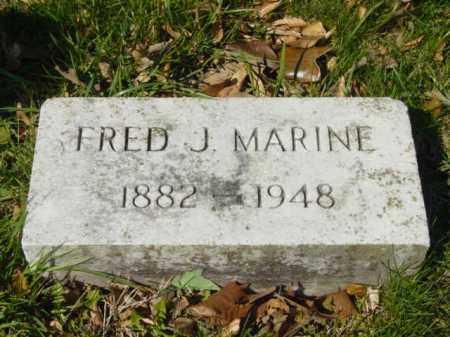 MARINE, FRED J. - Talbot County, Maryland | FRED J. MARINE - Maryland Gravestone Photos