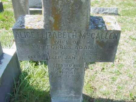 MCCALLEN, ALICE ELIZABETH - Talbot County, Maryland | ALICE ELIZABETH MCCALLEN - Maryland Gravestone Photos