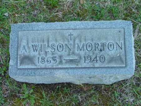MORTON, A. WILSON - Talbot County, Maryland   A. WILSON MORTON - Maryland Gravestone Photos