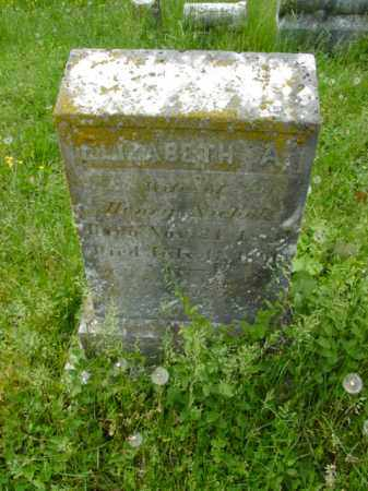 NICHOLS, ELIZABETH A. - Talbot County, Maryland   ELIZABETH A. NICHOLS - Maryland Gravestone Photos