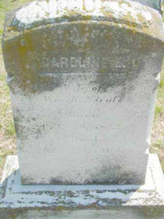 NICOLS, CAROLINE E. - Talbot County, Maryland | CAROLINE E. NICOLS - Maryland Gravestone Photos