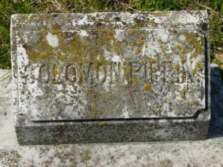 PIPPIN, SOLOMON - Talbot County, Maryland   SOLOMON PIPPIN - Maryland Gravestone Photos