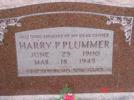PLUMMER, HARRY P. - Talbot County, Maryland | HARRY P. PLUMMER - Maryland Gravestone Photos