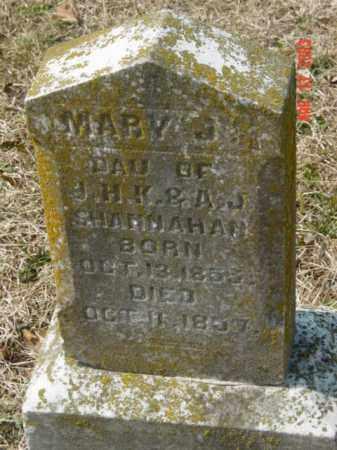 SHANNAHAN, MARY G. - Talbot County, Maryland | MARY G. SHANNAHAN - Maryland Gravestone Photos