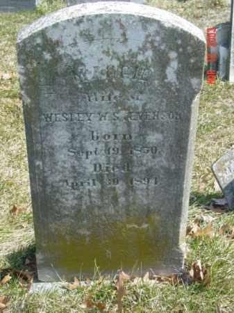 STEVENSON, MAGGIE - Talbot County, Maryland | MAGGIE STEVENSON - Maryland Gravestone Photos