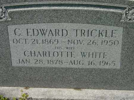 TRICKLE, CHARLOTTE - Talbot County, Maryland | CHARLOTTE TRICKLE - Maryland Gravestone Photos