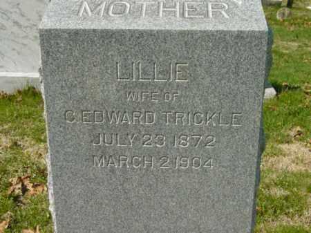 TRICKLE, LILLIE - Talbot County, Maryland | LILLIE TRICKLE - Maryland Gravestone Photos