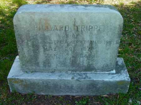 TRIPPE, RICHARD - Talbot County, Maryland   RICHARD TRIPPE - Maryland Gravestone Photos