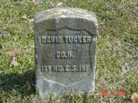 TUCKER, DAVID - Talbot County, Maryland | DAVID TUCKER - Maryland Gravestone Photos