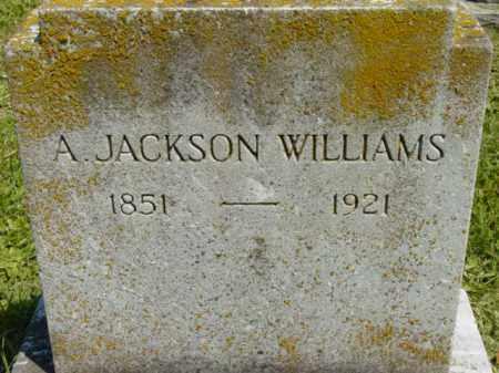 WILLIAMS, A. JACKSON - Talbot County, Maryland | A. JACKSON WILLIAMS - Maryland Gravestone Photos