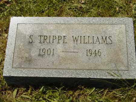 TRIPPE WILLIAMS, S. - Talbot County, Maryland | S. TRIPPE WILLIAMS - Maryland Gravestone Photos