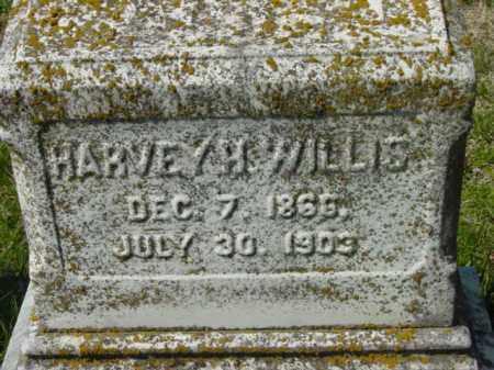 WILLIS, HARVEY H. - Talbot County, Maryland | HARVEY H. WILLIS - Maryland Gravestone Photos