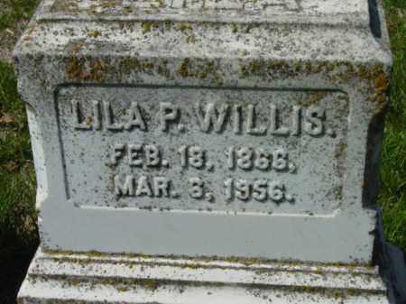 WILLIS, LILA P. - Talbot County, Maryland | LILA P. WILLIS - Maryland Gravestone Photos