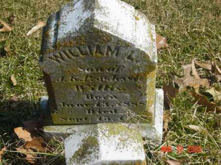 WILLIS, WILLIAM L. - Talbot County, Maryland | WILLIAM L. WILLIS - Maryland Gravestone Photos