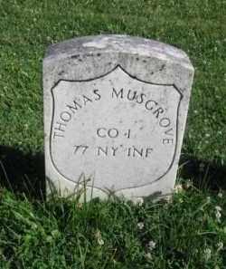 MUSGROVE (CW), THOMAS - Washington County, Maryland   THOMAS MUSGROVE (CW) - Maryland Gravestone Photos