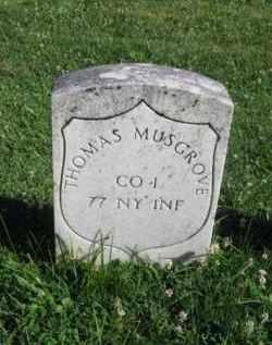 MUSGROVE (CW), THOMAS - Washington County, Maryland | THOMAS MUSGROVE (CW) - Maryland Gravestone Photos